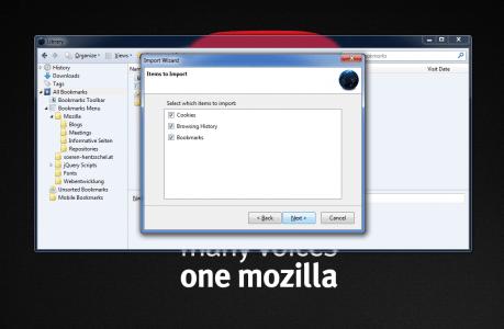 Firefox Chrome Import