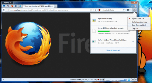 Firefox Download Panel